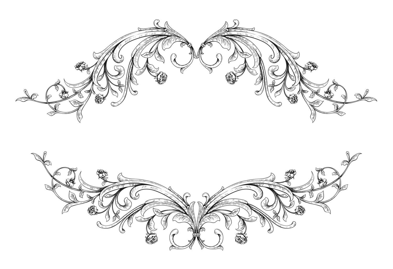 3 Vector Vintage Floral Frame2 Digital Immediate Download