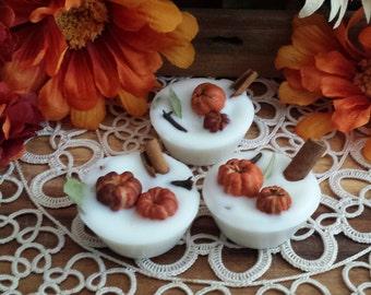 6 Pumpkin Pie Tarts, Fall Tarts, Winter Tarts, Soy Metls, Wax Melts