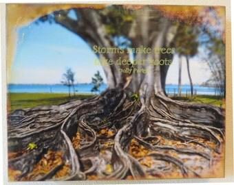 Deep Roots, Original Encaustic Artwork