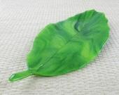 California Live Oak Leaf Fused Glass Dish