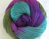 "Hand Dyed Sock Yarn  SW Merino/Nylon ""Flight of Fantasy"""