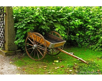 Fine Art Color Photography of Rustic Cart and Hedge in Sweden