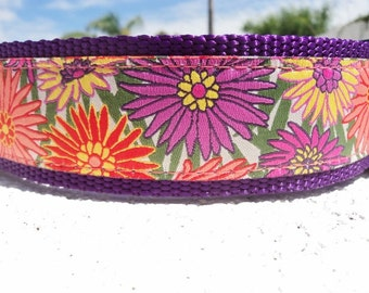 "Large Dog Collar Gerber Daisies 1.5"" wide Quick Release buckle -  upgrade to martingale / see 1"" listing"