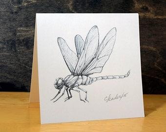 Dragonfly Card Pencil Drawing Bug Bugs winnipegteam