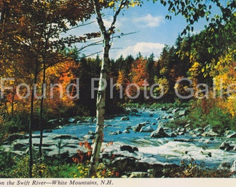 Vintage Postcard, Autumn in White Mountains, New Hampshire, Color Postcard, Old Postcard, Found Postcard, Travel Postcard, Travel Photo