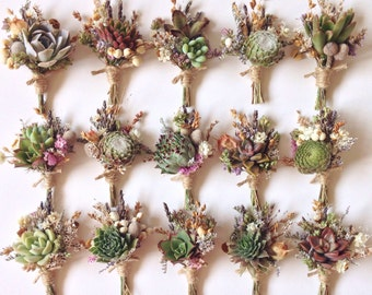 Succulent Boutonnieres // Flower Fields, Assorted