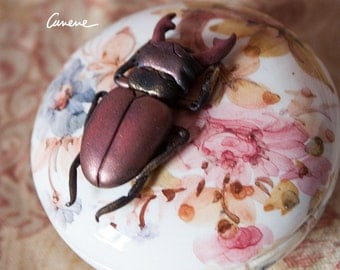 INSECTA-Coleoptera 3, beetle, scarab, pendant, hand made