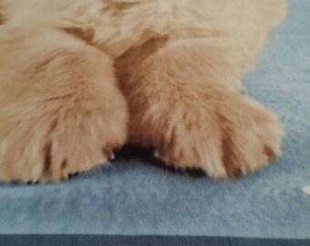 Milly (The Golden Retriever) Fleece Blanket