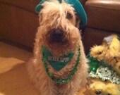 Lucky Dog, Luckier Human Dog Bandana with Shamrock