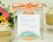 8 - Baby Shower Favor Cupcake Boxes - Welcome to the World - baby shower favors, baby shower cupcake box, personalized cupcake box