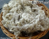 "2 oz Washed Mohair Locks, Angora Goat, ""Barnwood,"" Silvery Brown, Natural Color, Curly Locks, Spinning, Doll Hair, Blending Locks, Lockspun"