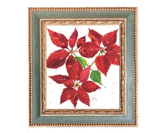 Poinsettia Holidays
