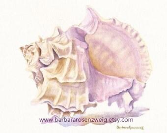 Seashell Painting, Shell Art Print, Sea Shell Watercolor Art, Beach Decor, Murex Nautical Wall Art, Coastal Wall Art Gift, Murex Shell Art