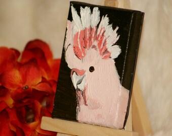 Miniature Pink Umbrella Cockatoo Painting - Art Magnet