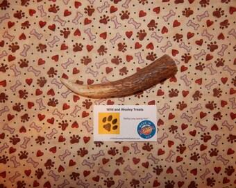 "Organic Medium Elk Antler Dog Chew ""Made in Montana"" (Lot B91)"