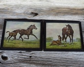 Horse Prints Framed Lithograph Prints Brown Horses Donald Art Company New York Farmhouse Ranch Country Home Decor