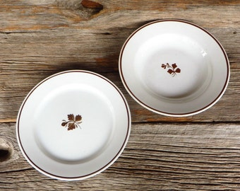 Tea Leaf Ironstone Bowl and Dinner Plate Thomas Furnival and Sons Alfred Meakin England Late 1800s White Ironstone with Copper Luster