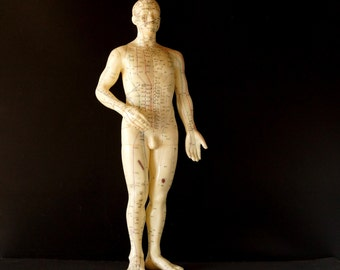 """Vintage Male Acupuncture Model / Medical Model, 19-1/2"""" tall (c.1970s) - Home or Office Decor, Medical Oddity Collectible, Altered Art"""