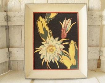 Vintage cactus flower print framed lithograph retro black background 1950s