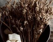 botanical wall art, beige decor, rustic home decor, still life, romantic wall decor, farmhouse decor, white flowers, girls room decor, brown