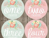 Baby Girl Month Stickers Monthly Baby Stickers, Milestone Baby Month Stickers, Monthly Bodysuit Vintage Floral Shabby Chic Blush Pink Mint