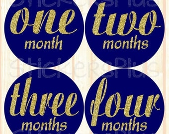 Monthly Baby Stickers Baby Girl Month Stickers Milestone Stickers Monthly Photo Stickers Bodysuit Sparkly Gold Glitter Navy Cursive Script