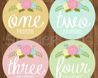 Monthly Baby Girl Stickers Baby Month Stickers, Monthly Bodysuit Milestone Stickers Vintage Roses Floral Flower Nursery Decor Photo Prop