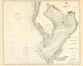 Tampa Bay 1900