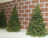 MINIATURE PINE TREES - Choose a Size - Wedding Decorations - Centerpiece Accessories