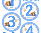 Baby Month Stickers Winnie the Pooh and Gang Blue Instant Download DIY Printable BONUS Just Born, 1-3 Weeks Reminder Stickers LDD-035