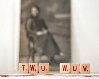 Vintage Wood Letter Cubes Word TWU WUV