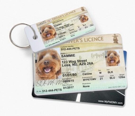 Custom Dog Id Tags Canada