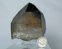 Authentic Brazilian Quartz Smoky Citrine Terminated Natural Quartz Crystal 2.75 inch Minas Gerais Brazil Display Specimen DanPickedMinerals