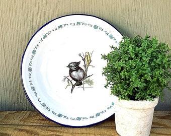 Enamelware BOWL with Small Bird | Vintage c.1930's Shallow White Enamel Bowl w/ Blue-trim, Floral Band, Crested Tit | TrEs Monterrey Mexico