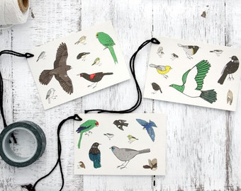 Colourful Bird Gift Tags - Eco-friendly