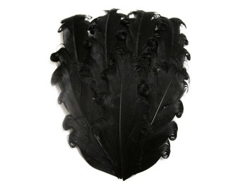 Nagorie Feather Pad - Set of 2 -  Black