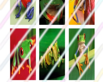 """Frog 1"""" x 2"""" Domino Images 4x6 Digital Collage Sheet  Instant Download"""