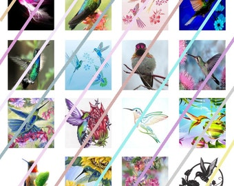 Humming Birds Scrabble Tile Images 4x6 Digital Collage Sheet Instant Download