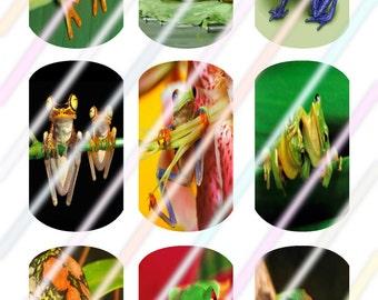 Frog Dog Tags Images 4x6 Digital Collage Sheet Instant Download
