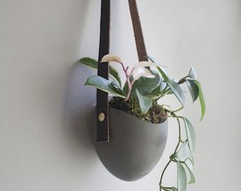 Leather Ash Spora