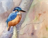 Bird painting, Kingfisher original watercolor, Blue bird aquarelle