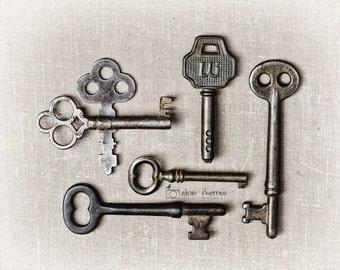 Key Wall Art Picture, Rustic Photography, Farmhouse Decor, Industrial Entryway Decor, Skeleton Keys  | 'Keyed Up'