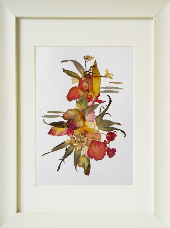 herbarium real dr ckte blumen bild wanddekoration abstrakte. Black Bedroom Furniture Sets. Home Design Ideas