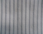 Shirting fabric--white with grey pinstripe. Dress shirt weight.