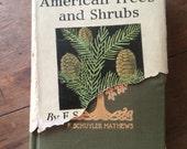 1915 Field Book of American Trees and Shrubs F. Schuyler Mathews G P Putnam Sons The Knickerbocker Press
