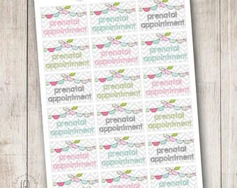 Prenatal Appointment Pregnancy Planner Stickers Chevron Bunting, Perfect for Erin Condren Life Planner