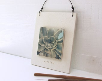 Succulent.  Polaroid Transfer Printed On Hand-Built Fired Clay Slab.  Layered Sewn Ceramic Slabs. Alternative Photography Process.