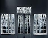 Vinyl Photography Backdrop Floordrop Prop - Spooky Window