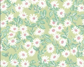 Kei Favorite Daisy Soft Green Color F  for Yuwa of Japan