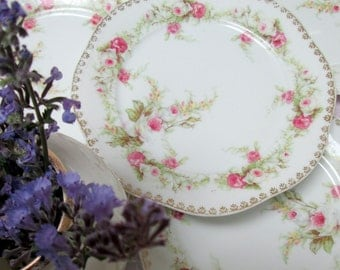 Antique Tea Plates, Set of 4, Porcelain, Pink Roses, Bavarian